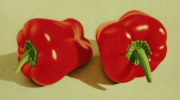 Two Red Bell Peppers 2010 colored pencil on paper 17.7 x 31.5 cm