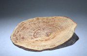 Pascal Oudet Galette Naturelle #280 2014 turned oak, sandblasted 25 x 23 x 5 cm