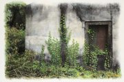 Gabriel Stauffer - Paxos, Ivy on Abandoned House 2017 Watercolor on gelatin silver print 30x40 cm - Unique work