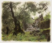Gabriel Stauffer - Paxos Olive Grove and ruined House 2017 Watercolor on gelatin silver print 30x40 cm - Unique work