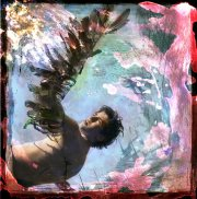 Vivian van Blerk - Metamorphoses, Icarus 2011 - photomontage, c-print (ed. of 9) 50 x 50 or 115 x 115 cm