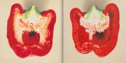 Two Halves of a Red Bell Pepper (diptych) 2013 colored pencil on paper 22.8 x 22.8 cm each